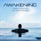 Awakening (Extended Mix) by Dobie