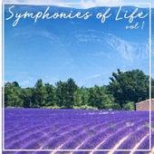 Symphonies Of Life, Vol. 1 - Handel: Overtures de Academy Of St. Martin-In-The-Fields
