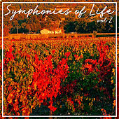Symphonies Of Life, Vol. 2 - Tchaikovsky: Overture 1812; Cappricio Italien; Marche Slave de Academy Of St. Martin-In-The-Fields