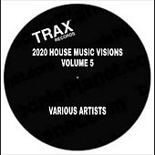 2020 House Music Visions Volume 5 de Various Artists