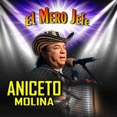 El Mero Jefe de Aniceto Molina