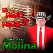 El Mero Mero de Aniceto Molina