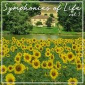 Symphonies Of Life, Vol. 3 - Mozart: The Mozart Album von Concerto Köln