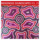 Indigenous Soundscapes, Vol. 25 by David Hudson