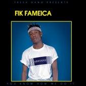 You Know How We Do It de Fik Fameica