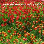 Symphonies Of Life, Vol. 9 - Vivaldi: Concerti von Concerto Köln