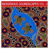 Indigenous Soundscapes, Vol. 5 by Ash Dargan
