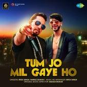Tum Jo Mil Gaye Ho - Single by Mika Singh