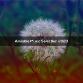 AMIABLE MUSIC SELECTION 2020 de Various Artists