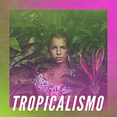 Tropicalismo de Various Artists