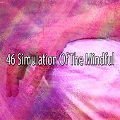 46 Simulation of the Mindful de Massage Tribe