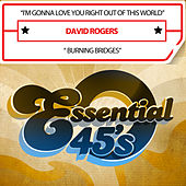 I'm Gonna Love You Right out of This World / Burning Bridges (Digital 45) by David Rogers