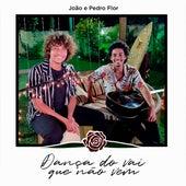 Dança do Vai Que Não Vem de João e Pedro Flor