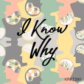 I Know Why by Krftski