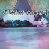 47 Bed Rest Wonderland de Best Relaxing SPA Music