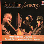 Soothing Synergy by Pandit Hariprasad Chaurasia
