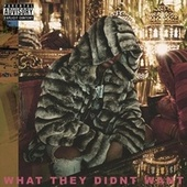 What They Didnt Want by Young Kye
