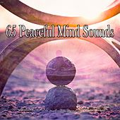 65 Peaceful Mind Sounds de Musica Relajante