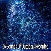 66 Sounds of Outdoors Recorded de Japanese Relaxation and Meditation (1)