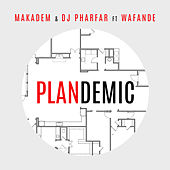 Plandemic by Makadem