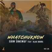 Whatchuknow (feat. Alaa Nabil) de Grim Singmuf