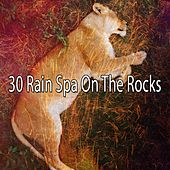 30 Rain Spa on the Rocks by Rain Sounds and White Noise