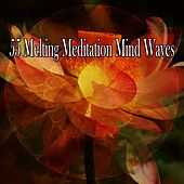 55 Melting Meditation Mind Waves by Classical Study Music (1)