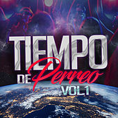 Tiempo de Perreo, Vol. 1 by Various Artists