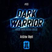 Dark Warrior (Chris Schweizer Remix) by Andrew Rayel