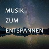 Musik zum Entspannen - Die schönste Klassik zum Lesen, Lernen oder Studieren von Various Artists