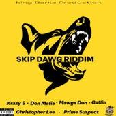 Skip Dawg Riddim by Various Artists