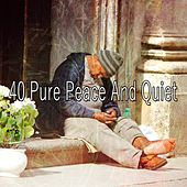40 Pure Peace and Quiet von Rockabye Lullaby