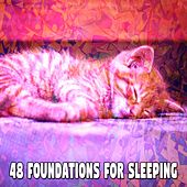 48 Foundations for Sleeping by Ocean Sounds Collection (1)