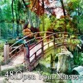 48 Open Your Senses von Yoga