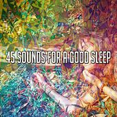 45 Sounds for a Good Sle - EP by Serenity Spa: Music Relaxation