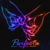 Perfecta (feat. Tax Millie) by Ramon Vega