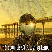 45 Sounds of a Living Land de Meditation Spa