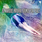 80 Various Natural Sounds for Peace de Best Relaxing SPA Music