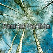 32 Transmute Anxiety to Peace with Storms by Rain Sounds and White Noise