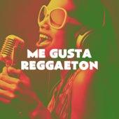 Me Gusta Reggaeton de Boricua Boys, Grupo Super Bailongo, Miami Beatz, Los Reggaetronics