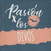 Pasión por los Divos by Various Artists