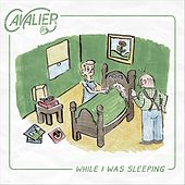 While I Was Sleeping by Cavalier