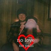 No Love No Pain von Octopus