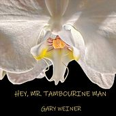 Mr. Tambourine Man by Gary Weiner