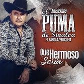 Que Hermoso Seria (feat. Banda Azpericueta) by El Puma De Sinaloa