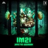 IM21, Pt.1 de Infected Mushroom