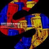 Tu Tambor (feat. Totó La Momposina) (Kryder Extended Mix) de Cato Anaya