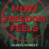 How Freedom Feels de Darryl Worley