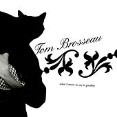 What I Mean to Say is Goodbye de Tom Brosseau