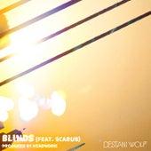 Blinds von Destani Wolf